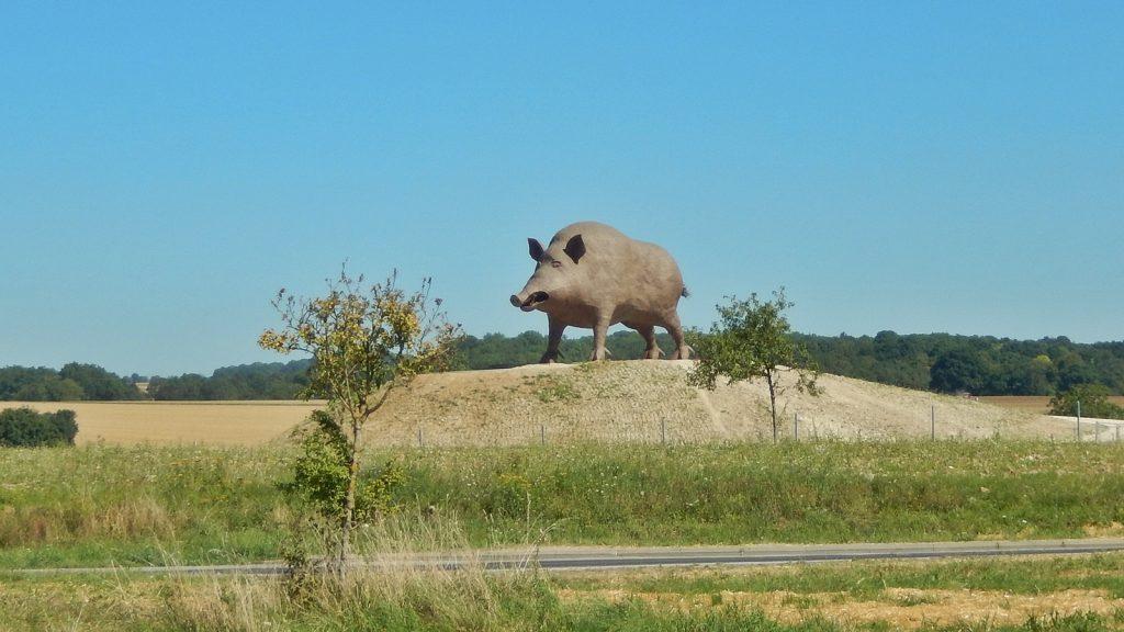 Größtes Wildschwein Frankreichs an der Raststätte in Saulces-Monclin.