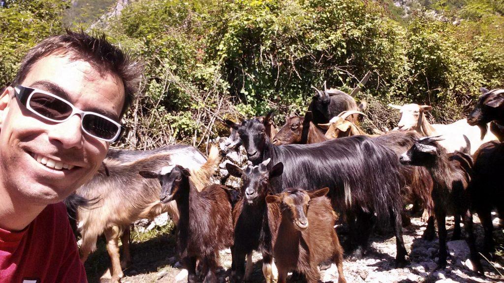 Didi Wöhrmann und die Ziegen. Nderlysaj, Albanien 2016