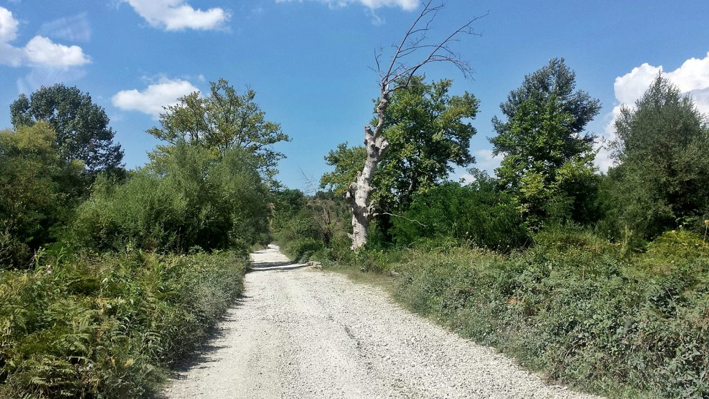 """Gelbe"" Bundesstraße, Hauptverkehrsstraße, Albanien"