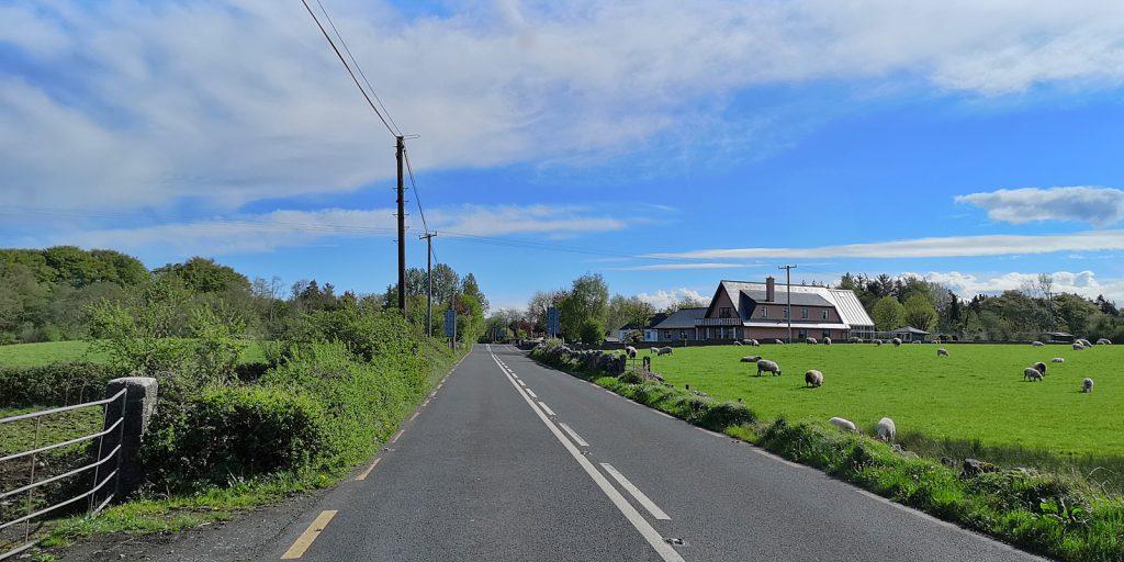 Zwischen Gort und Loughrea