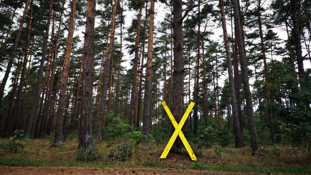 Wendland: Ein gelbes X als Zeichen des Protestes gegen das Atomlager Gorleben