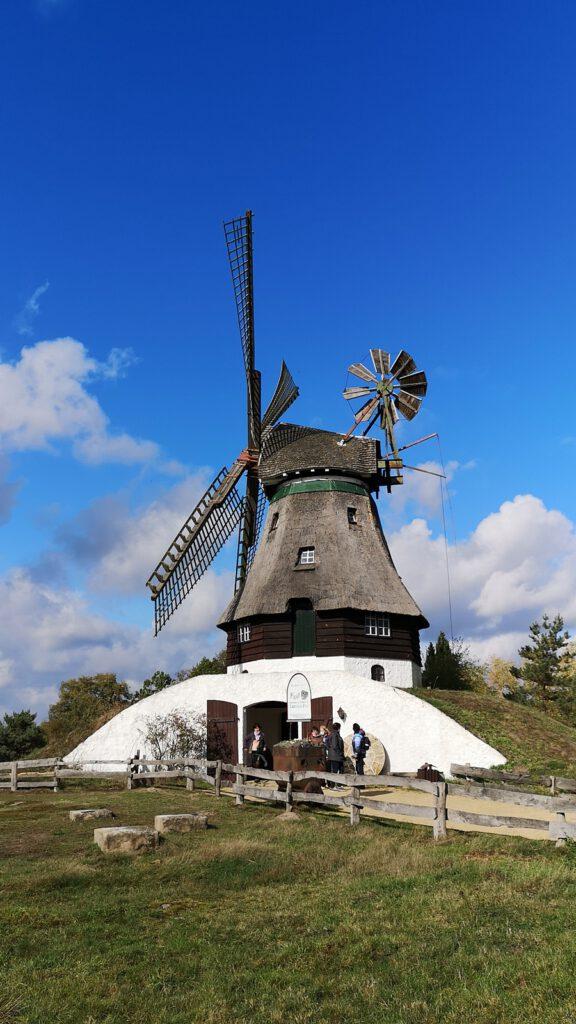 Berg- oder Kellerholländermühle aus Dithmarschen, Deutschland